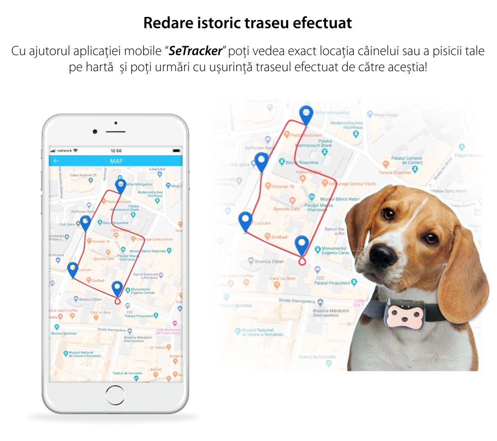 Zgarda cu Localizare GPS Pentru Animale PT-01 – Negru – Roz