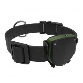 GPS Tracker Pentru Animale Motto TD-05D cu Functie de Localizare GPS, Perimetru de siguranta, LED Indicator, Istoric traseu
